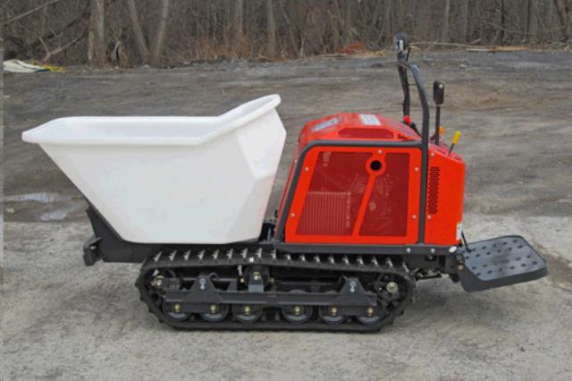 Concrete Track Georgia Buggy Rentals Lexington Ky Where